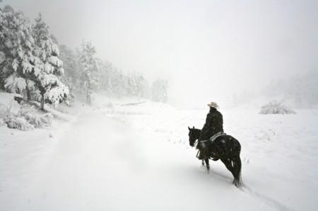 blizzard_horse_ride