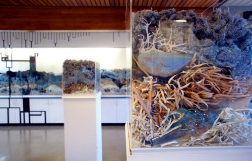 "Susan Murrell, ""Substance and Circumstance"" (installation view)"