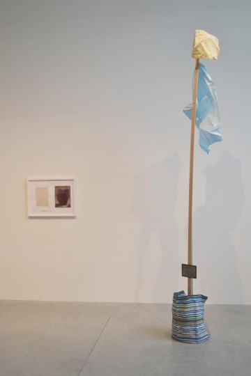 """Flag (Symbol Set)""/Linfield Gallery"