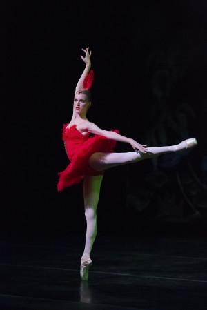 """""""Firebird"""" Performance,The Portland Ballet"""