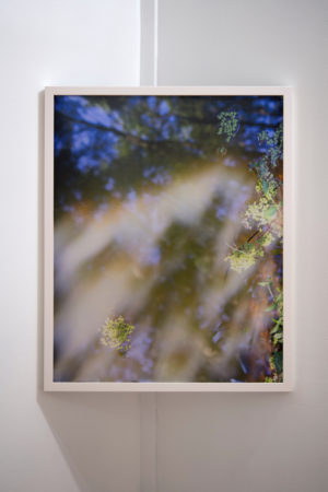 "Teresa Christiansen, ""Sunny Nebulosity""/Courtesy Melanie Flood Projects"