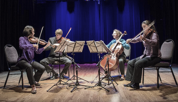 Delgani Quartet. Photo: Bridie Harrington.
