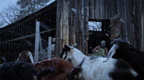 """Boone,"" by Christopher LaMarca and Katrina Taylor, screening Wednesday at the Northwest Film Center."