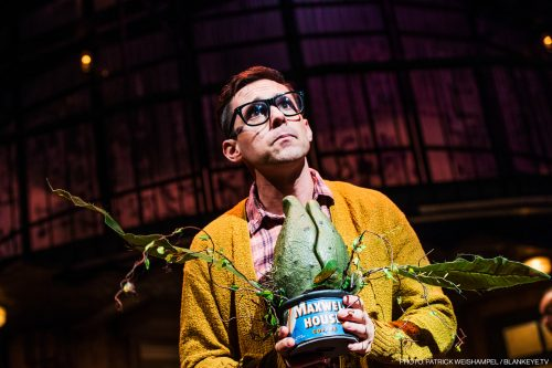 Nick Cearley as Seymour, with a baby-sized Audrey II. Photo: Patrick Weishampel