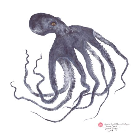 Duncan Berry hand-printed this 18-by-18-inch gyotaka – or fish rubbing – directly from the octopus. He will demonstrate his work, in conjunction with an exhibit at the Oregon Coast Aquarium in Newport, in two sessions on Saturday, June 15.